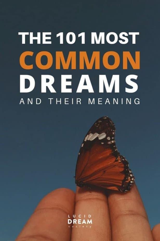 Dream Interpretation: 109 Dream Meanings - Lucid Dream Society
